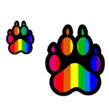 LGBT Pride Rainbow Paw Funny Car And T-Shirt Decal Sticker